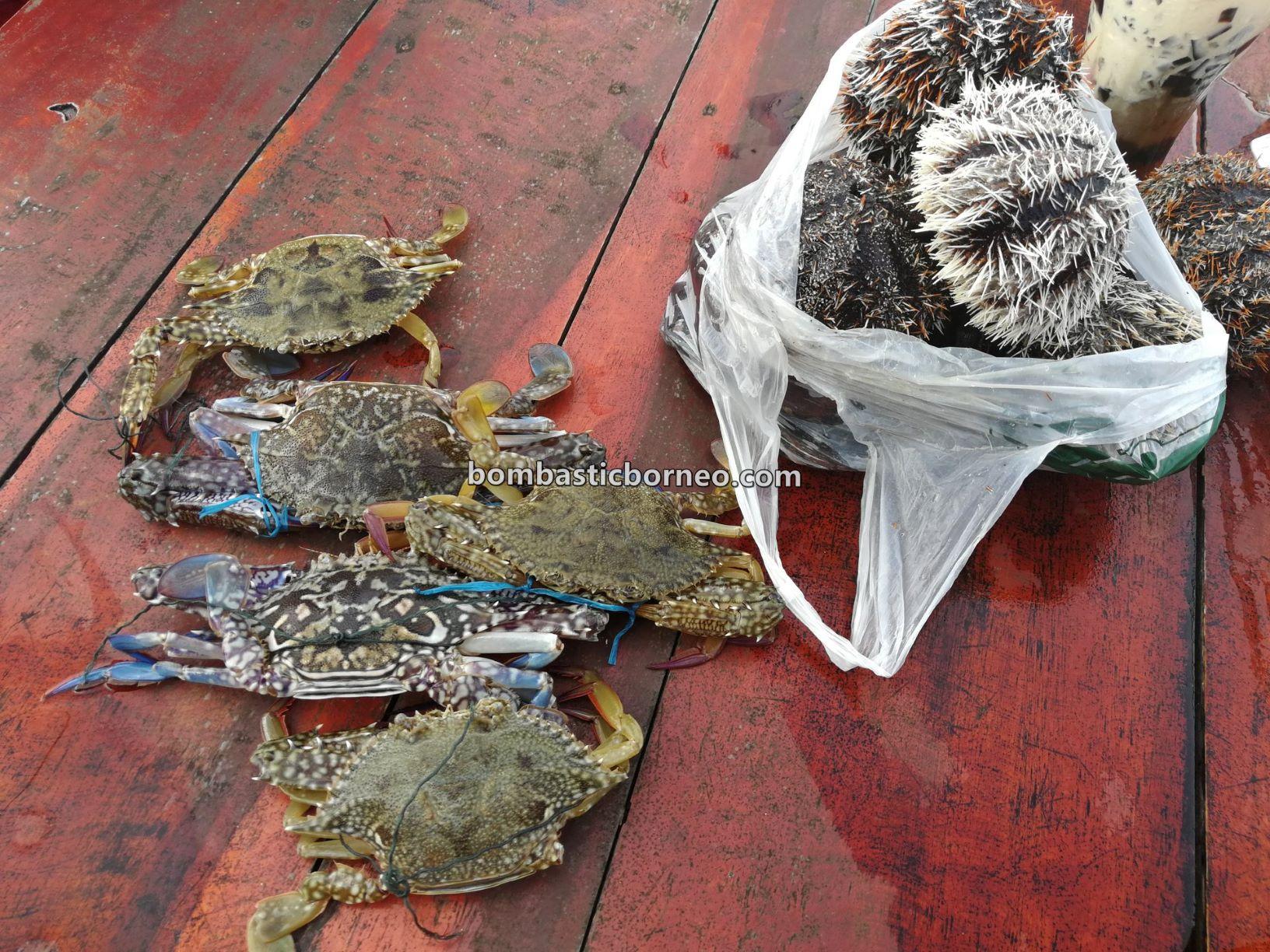 makanan laut, Pesta Regatta Lepa, backpackers, destination, nature, Tourism, tourist attraction, 穿越婆罗洲游踪, 马来西亚沙巴, 仙本那海鲜旅游景点