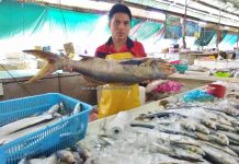 Pasar Sin On, local market, traditional, exploration, fish, seafood, lobster, makanan laut, Borneo, Malaysia, Sabah, Tawau, Tourism, tourist attraction, travel guide,