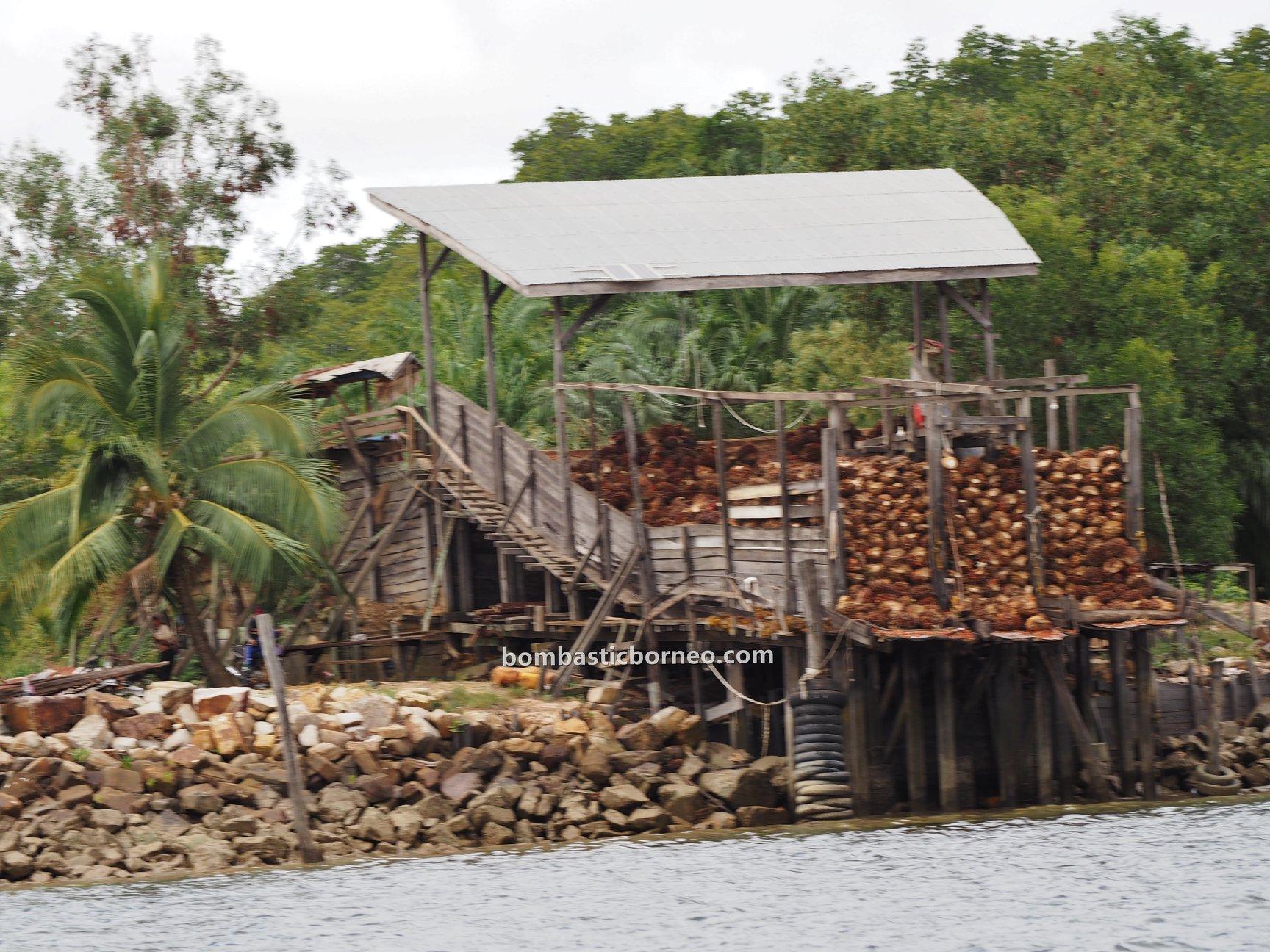 Island, jelajah, exploration, Tawau, tourism, Borneo,