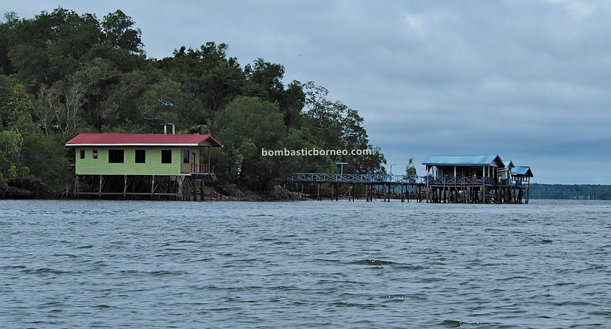 Polis, Pulau, boat ride, jelajah, exploration, adventure, backpackers, mangrove forest, Monyet Belanda, tourism, Trans Border, Borneo, 跨境婆罗洲游踪, 马来西亚沙巴斗湖