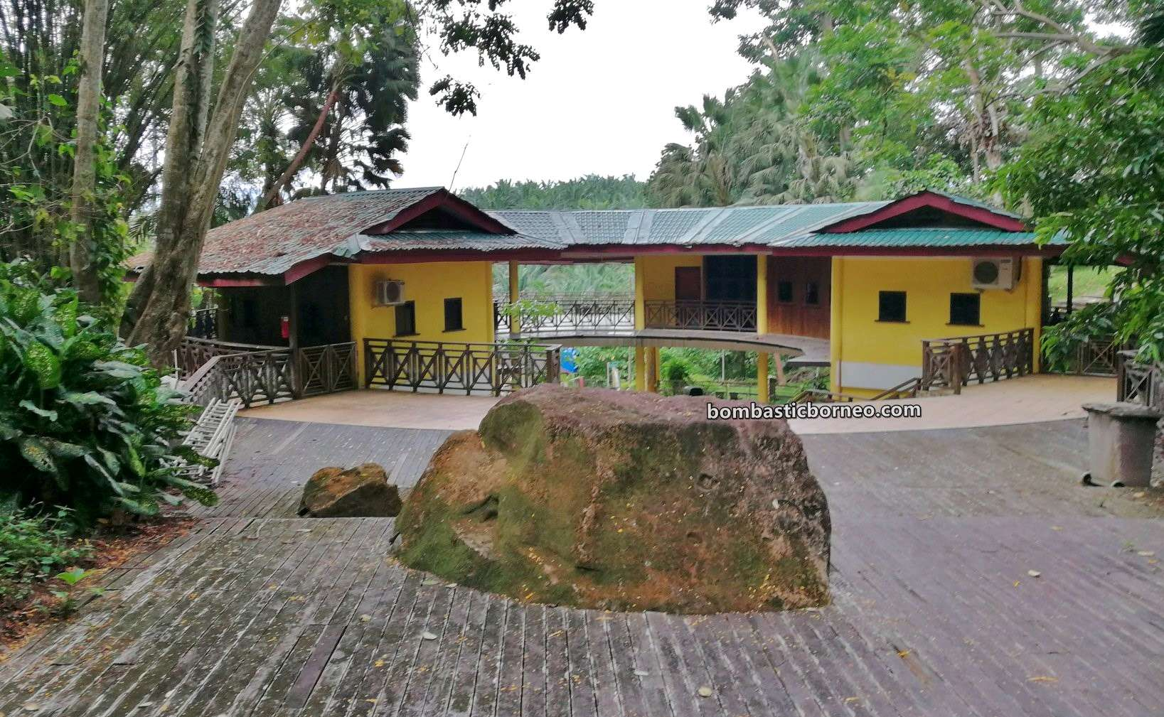 Pusat Sejadi Bukit Gemok, Gemok Hill Forest Reserve, rainforest, primary jungle, conservation, exploration, backpackers, destination, Hutan simpan, Tawau, Malaysia, Sabah, tourist attraction, travel guide, Trans Borneo,