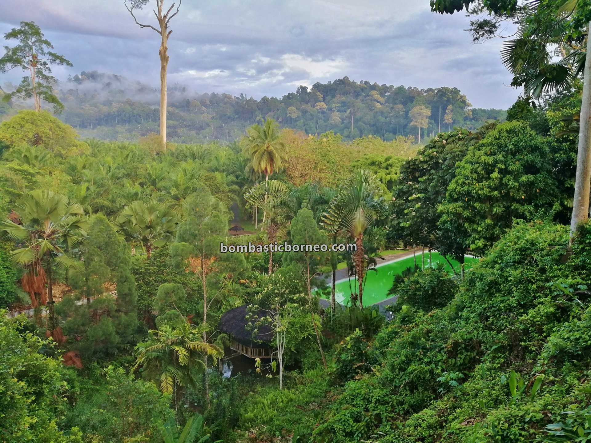 Balung River Eco Resort, accommodation, chalets, adventure, nature, outdoor, destination, exploration, recreational park, Tawau, Malaysia, Sabah, ecotourism, tourist attraction, Trans Borneo,