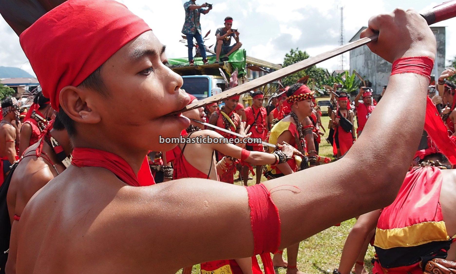 Festival Budaya Dayak, authentic, indigenous, traditional, culture, event, native, tribal, Indonesia, destination, Obyek wisata, Tourism, 印尼西加里曼丹, 婆罗洲达雅文化, 孟加映土著部落