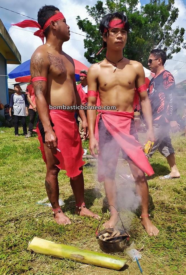 Festival Budaya, authentic, indigenous, Ethnic, native, event, Kalimantan Barat, Tangkitn raksasa, destination, Tourism, tourist attraction, travel guide, 婆罗洲西加里曼丹, 印尼孟加映, 原住民传统文化