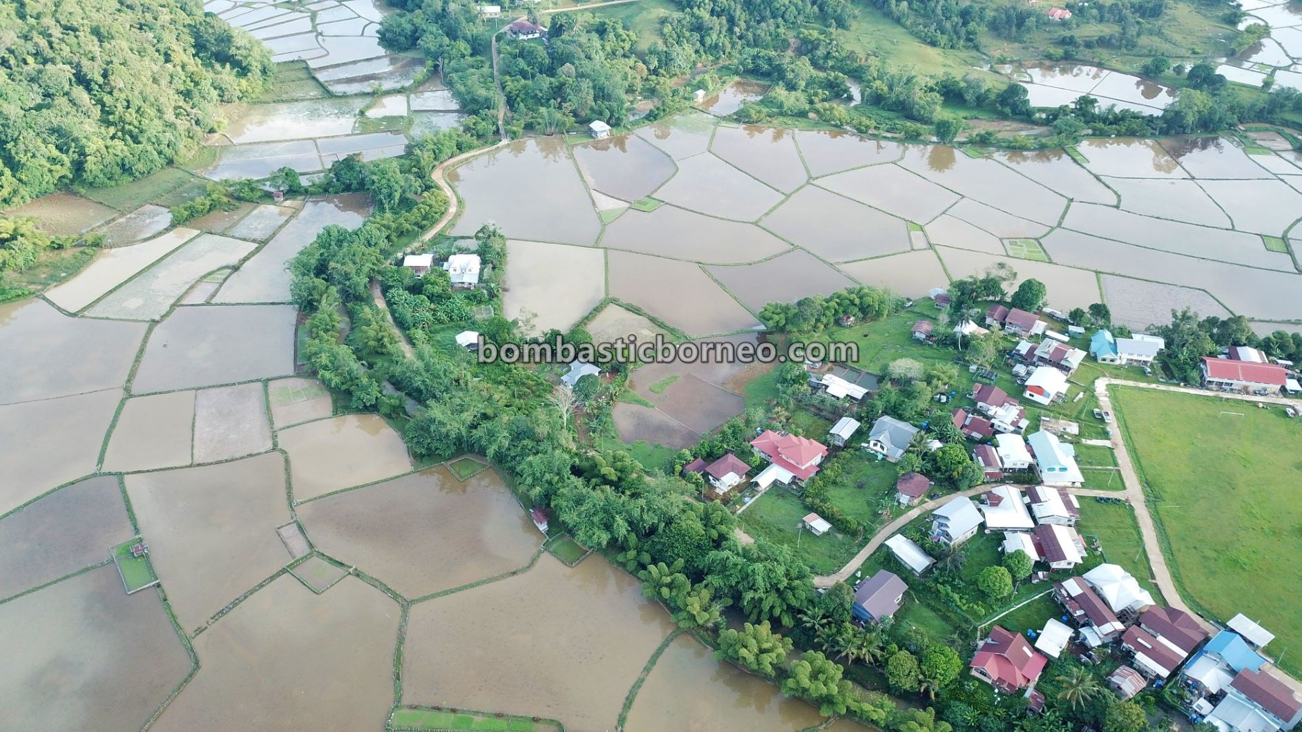 traditional, paddy fields, homestay Matius, backpackers, Interior, Maligan Highlands, Malaysia, Orang Ulu, Tribe, Tourism, Trans Border, Borneo, 跨境婆罗洲游踪, 马来西亚内陆高原, 砂拉越巴卡拉兰,