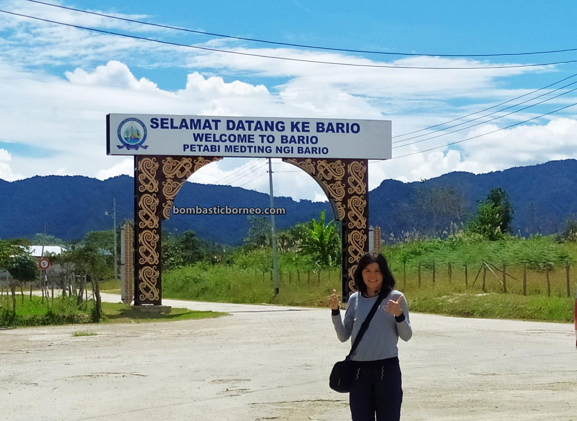 Bario airport, Kelabit Highlands, adventure, authentic, backpackers, exploration, Interior village, native, orang ulu, Malaysia, Sarawak, Tourism, travel guide, Cross Border, Borneo,