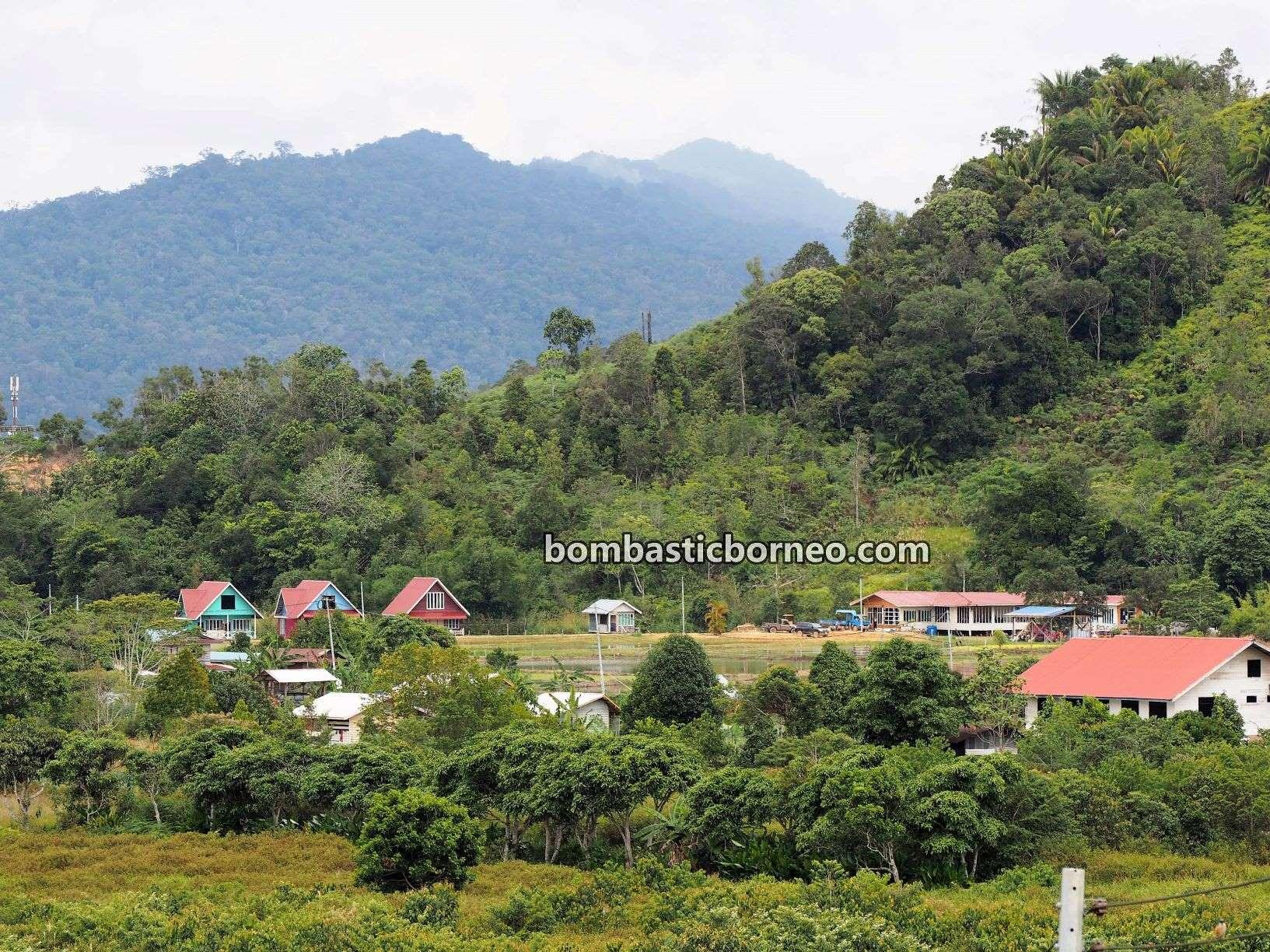 Kelabit Highlands, adventure, traditional, destination, exploration, homestay, tribe, Malaysia, Tourism, travel guide, Cross Border, Borneo, 穿越婆罗洲马来西亚, 砂拉越巴里奥高原, 原住民土著部落,