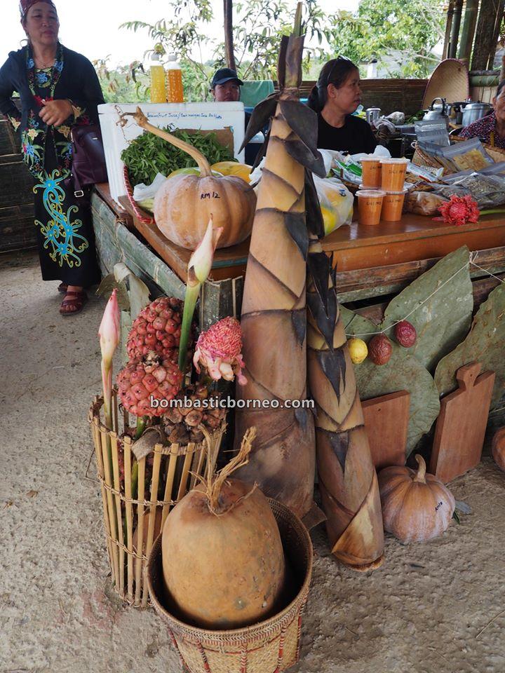 Pesta Nukenen, Bario Food Cultural Festival, traditional, backpackers, destination, exploration, dayak, Orang Asal, tribe, Kelabit people, Tourism, travel guide, 穿越婆罗洲马来西亚, 砂拉越内陆高原, 巴里奥原住民部落,