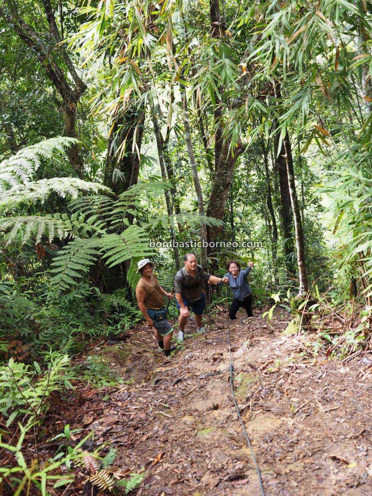 Bario, Kelabit Highlands, adventure, nature, outdoor, backpackers, destination, exploration, hiking, jungle trekking, Prayer mountain, Interior village, Malaysia, Sarawak, Borneo,