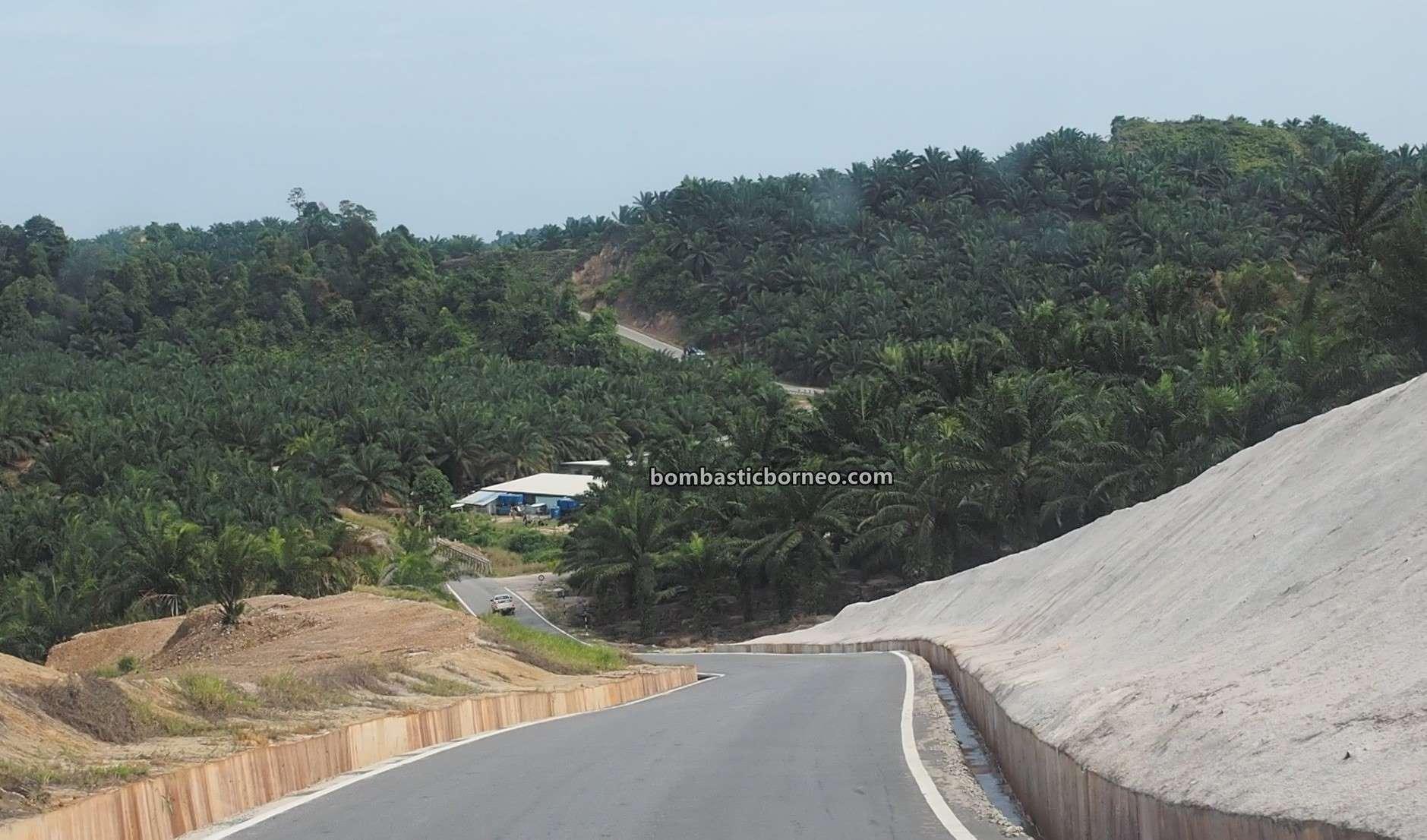 adventure, Transportation, interior, backpackers, Sungai Baram, tourism, tourist attraction, travel guide, Trans Border, Borneo, 探索马来西亚内陆, 砂拉越美里马鲁帝