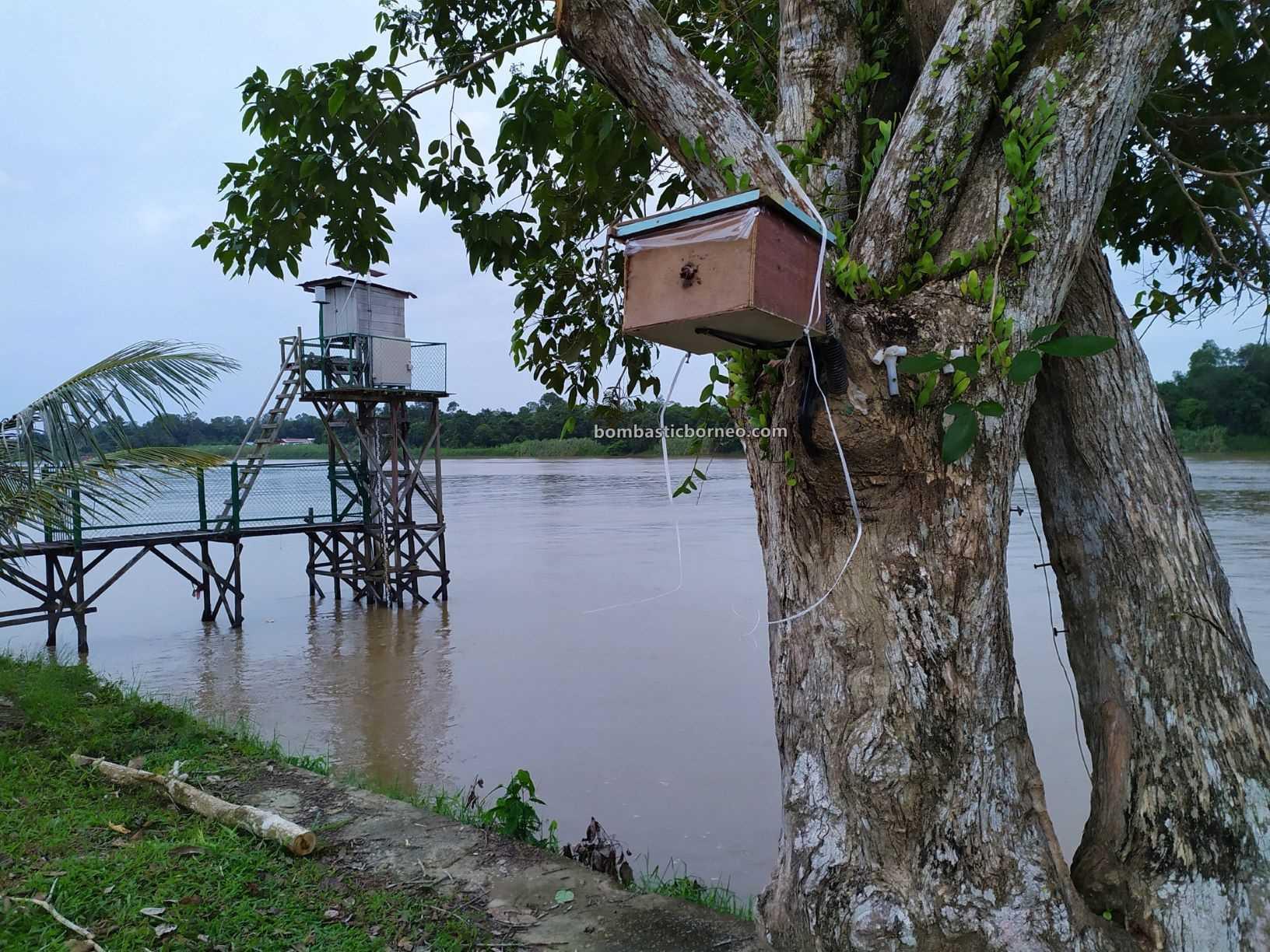 adventure, interior, backpackers, Destination, exploration, Miri, town, Tourism, Trans Borneo, 跨境婆罗洲马来西亚, 砂拉越美里马鲁帝