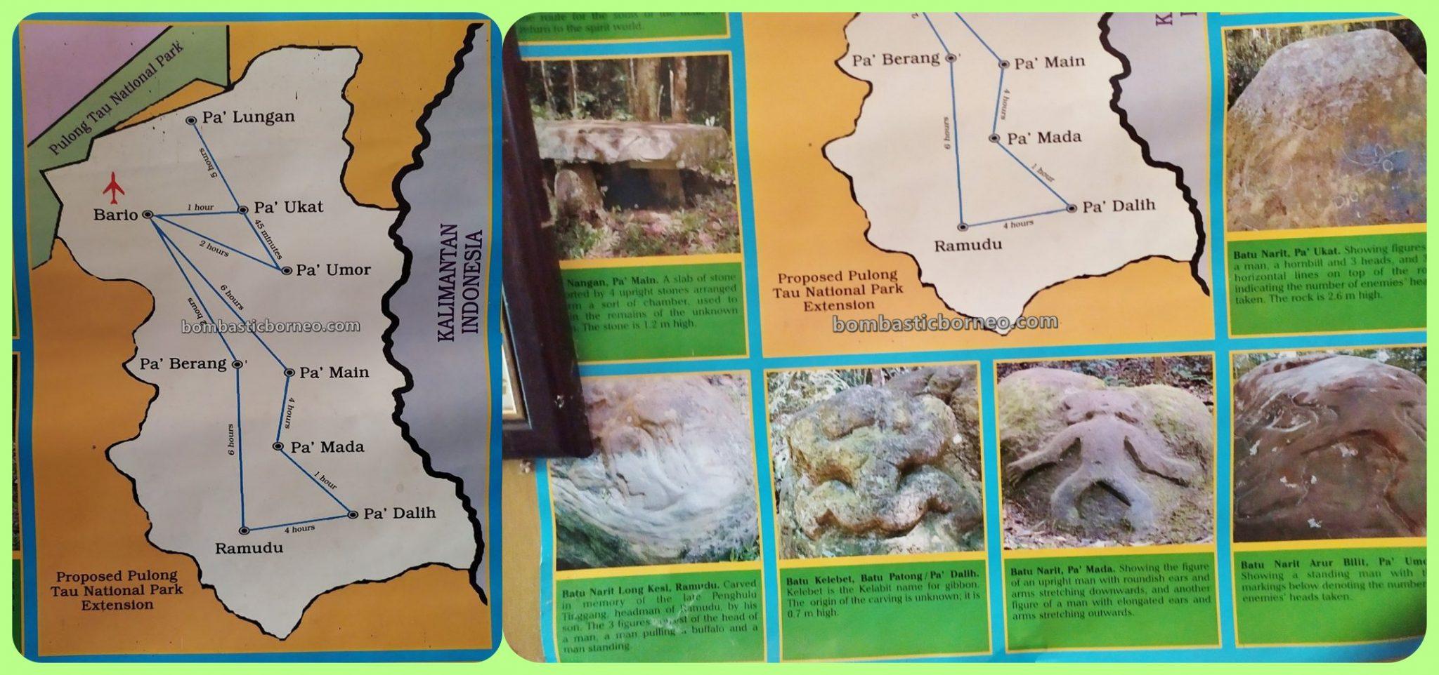 nature, taman negara, Bario. Kelabit Highlands. Tanah Tinggi Bario, backpackers, destination, exploration, Interior village, Orang Ulu, tourist attraction, travel guide, Trans Borneo, 穿越婆罗洲砂拉越, 巴里奥国家公园