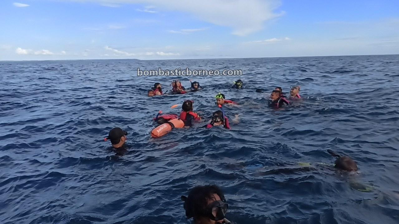 Pulau Maratua, backpackers, diving spot, exploration, adventure, nature, outdoors, Berau, Wonderful Indonesia, Pariwisata, tourist attraction, travel guide, Trans Border, 探索婆罗洲游踪, 印尼东加里曼丹