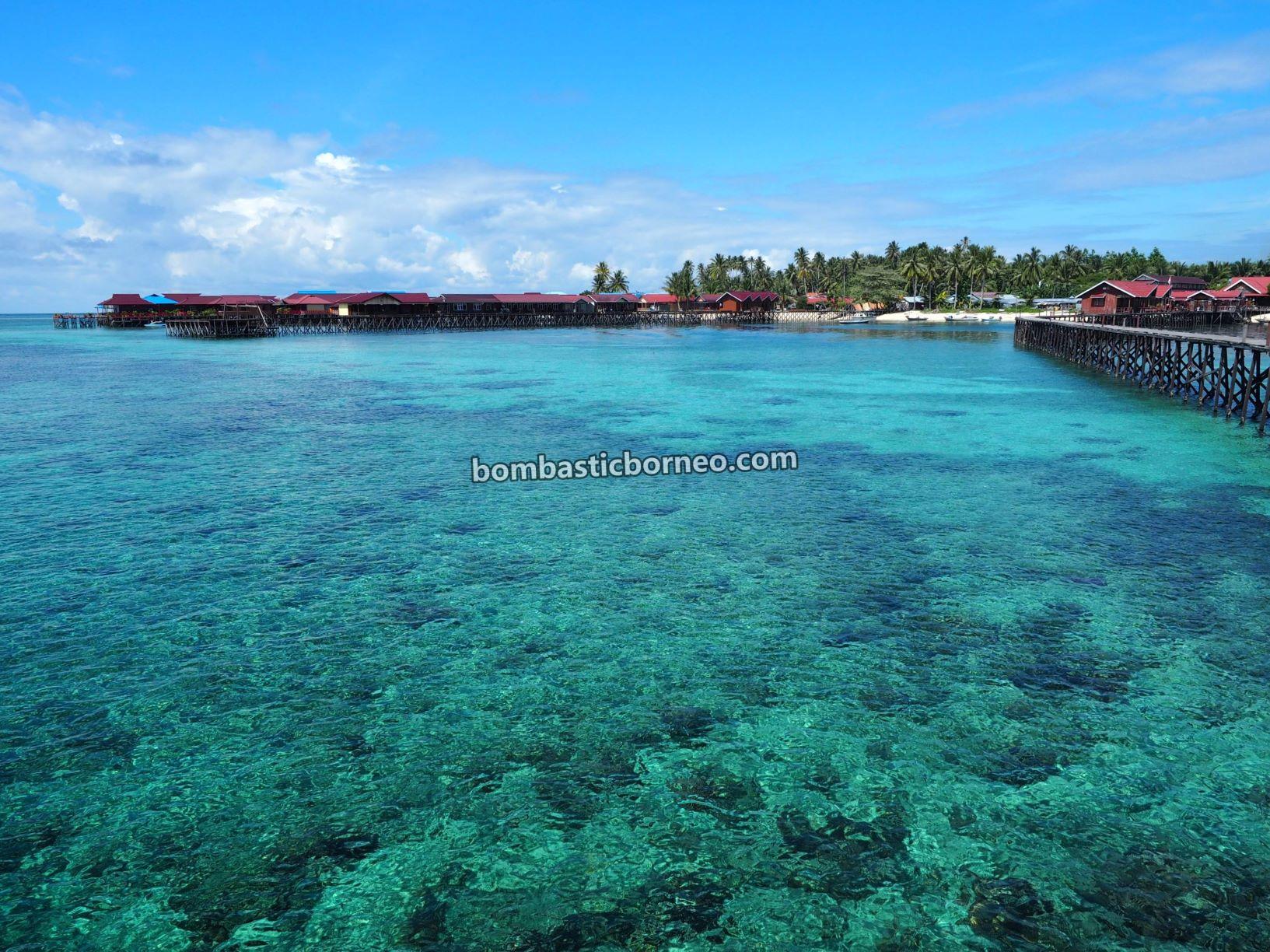 Kepulauan Derawan, Destination, diving spot, exploration, vacation, snorkelling, Berau, Kalimantan Timur, Sulawesi Sea, wisata alam, Tourism, travel guide, 探索婆罗洲游踪, 印尼东加里曼丹, 达拉湾岛旅游景点,