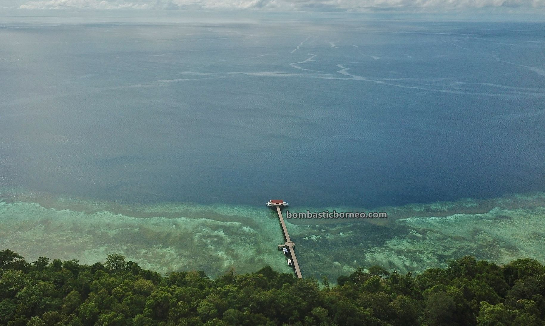 Kepulauan Derawan, Danau Ubur-Ubur, Stingless Jellyfish Lake, nature, destination, diving, Snorkelling, holiday, East Kalimantan, Pariwisata, Tourism, Cross Border, Borneo, 印尼卡卡班岛, 东加里曼丹水母天堂,