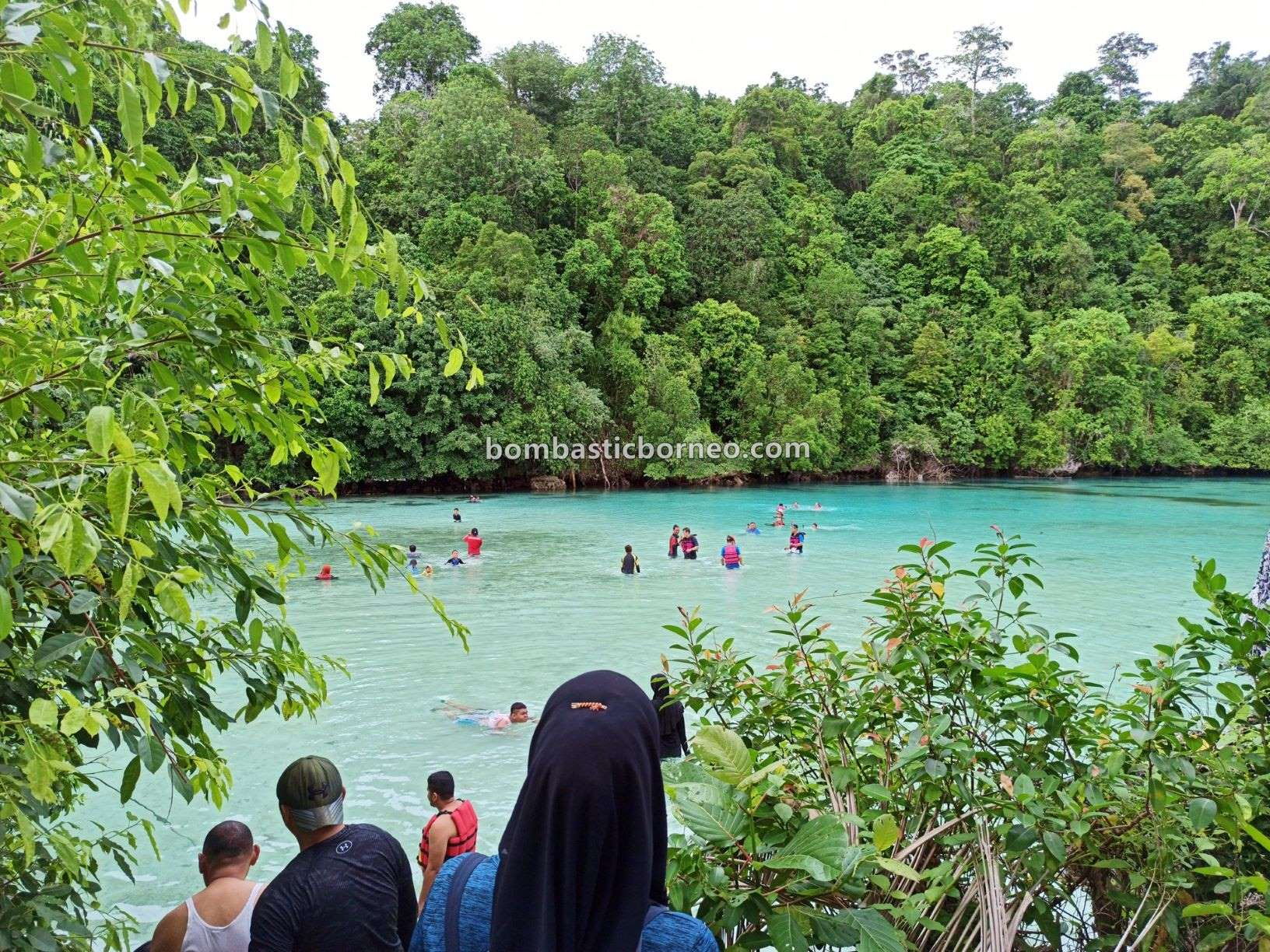 Emerald Pool, Laguna, Lobang Ikan, Derawan Archipelago, Kakaban Island, destination, hidden paradise, holiday, Kalimantan Timur, Pariwisata, Tourist attraction, travel guide, 探索婆罗洲游踪, 印尼东加里曼丹, 卡卡班岛旅游景点,