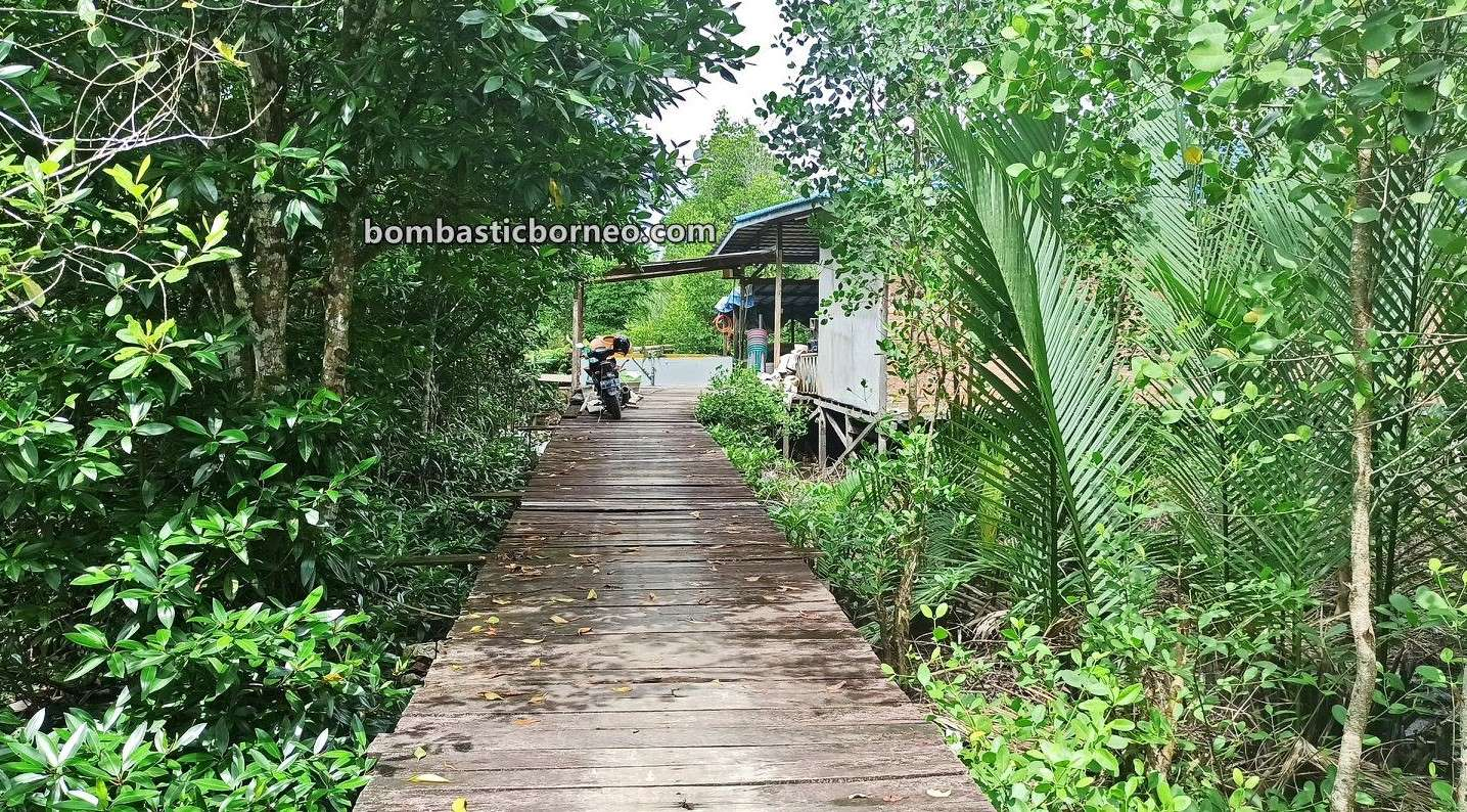Kepiting Soka, seafood, exploration, Indonesia, Kalimantan Utara, Kaltara, objek wisata, Tourism, travel guide, Trans Borneo,