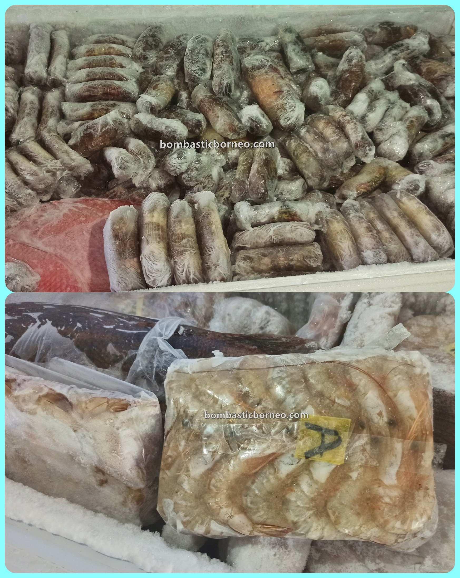 Kepiting Soka, Soft Shell Crab Farm, backpackers, destination, Exotic Food, exploration, Kaltara, Pariwisata, tourist attraction, travel guide, 北加里曼丹打拉根, 印尼软壳螃蟹养殖场