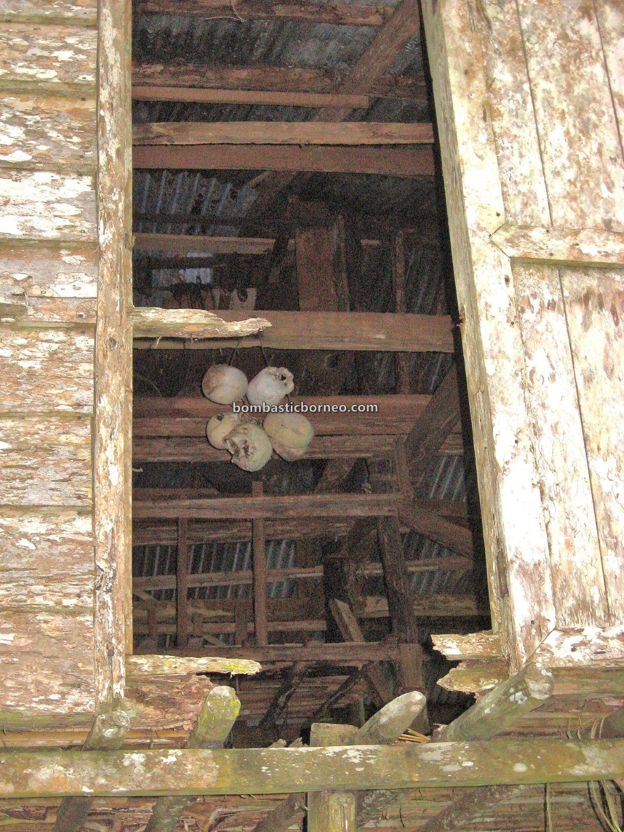 Kampung Serumah, Kampung Gayu, village, Baruk, skulls house, exploration, Padawan, Kuching, Sarawak, Malaysia, Tourism, travel, Borneo