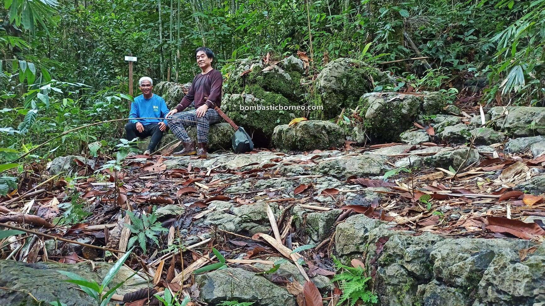 Bung Mawang, Kampung Serumah, Kampung Gayu, nature, trekking, hiking, exploration, Kuching, Sarawak, Malaysia, backpackers, Tourism, tourist attraction, travel guide, Trans Borneo
