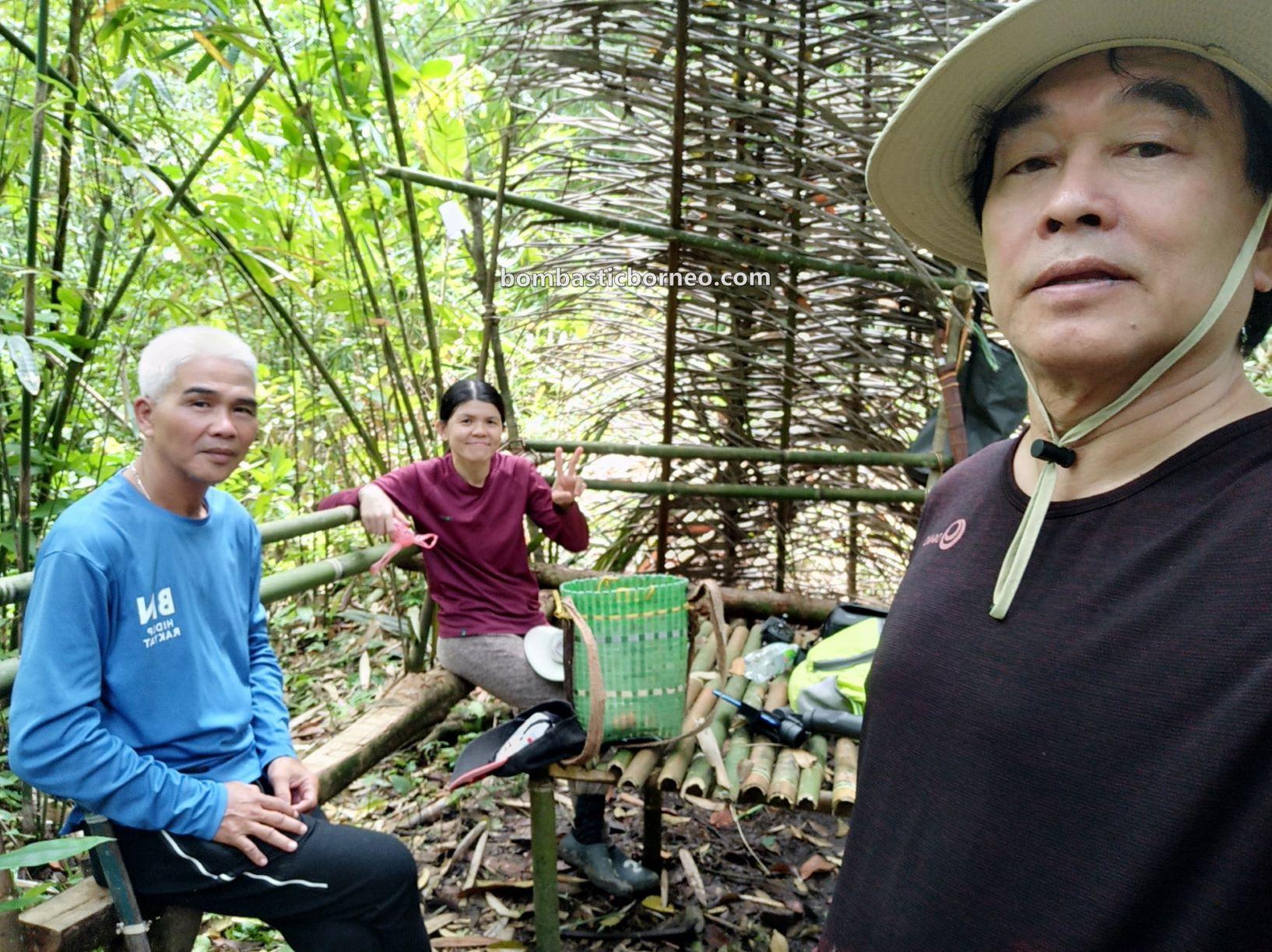 adventure, nature, outdoor, jungle trekking, exploration, Padawan, Sarawak, Malaysia, Tourism, tourist attraction, travel guide, Borneo, 马来西亚砂拉越, 古晋自然生态, 婆罗洲丛林徒步