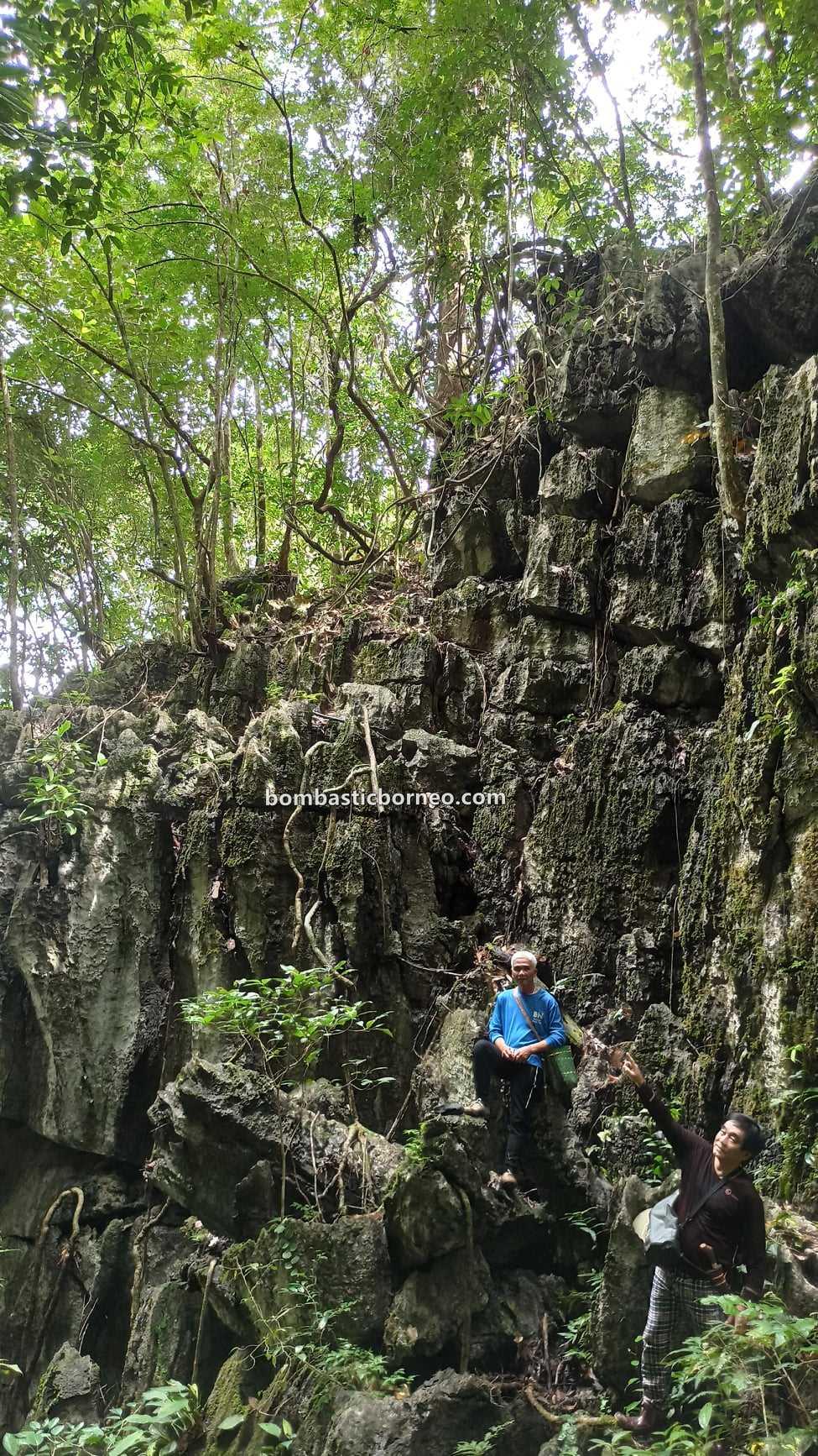 Bung Mawang, Kampung Serumah, Kampung Gayu, adventure, outdoor, jungle trekking, exploration, Kuching, Malaysia, tourist attraction, travel local, Borneo, 探索婆罗洲热带雨林, 砂拉越自然生态, 古晋丛林徒步