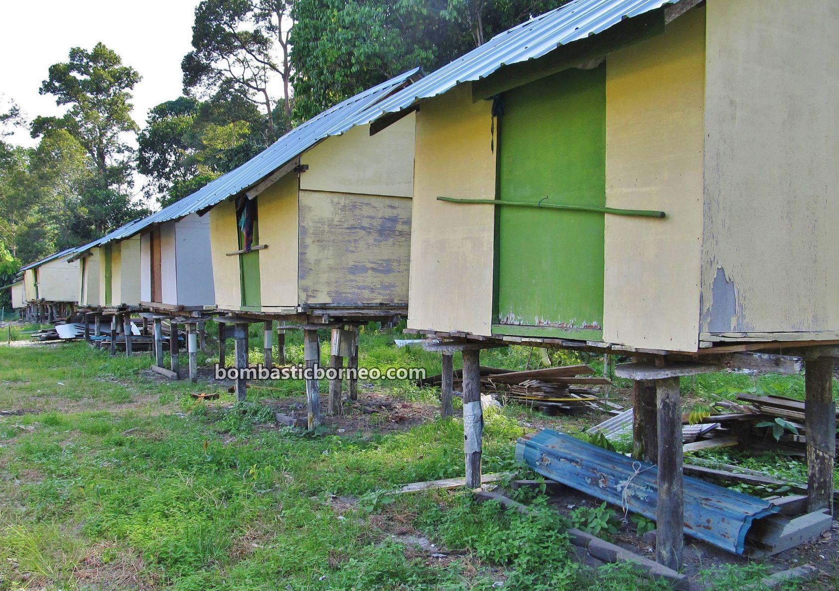 Village, paddy silo, Traditional, Dayak Selako, native, culture, Malaysia, Tourism, tourist attraction, exploration, travel guide, travel locally, Borneo, 探索婆罗洲游踪, 马来西亚砂拉越