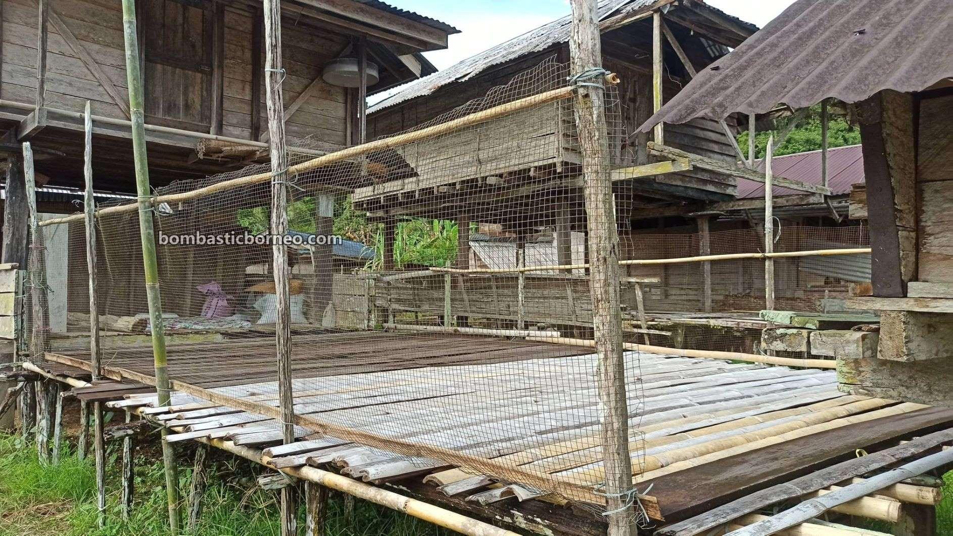 Village, hill paddy farming, paddy silo, authentic, native, Serian, Malaysia, Tourism, tourist attraction, travel guide, travel locally, Trans Borneo, 探索婆罗洲砂拉越, 马来西亚西连, 比达友传统文化