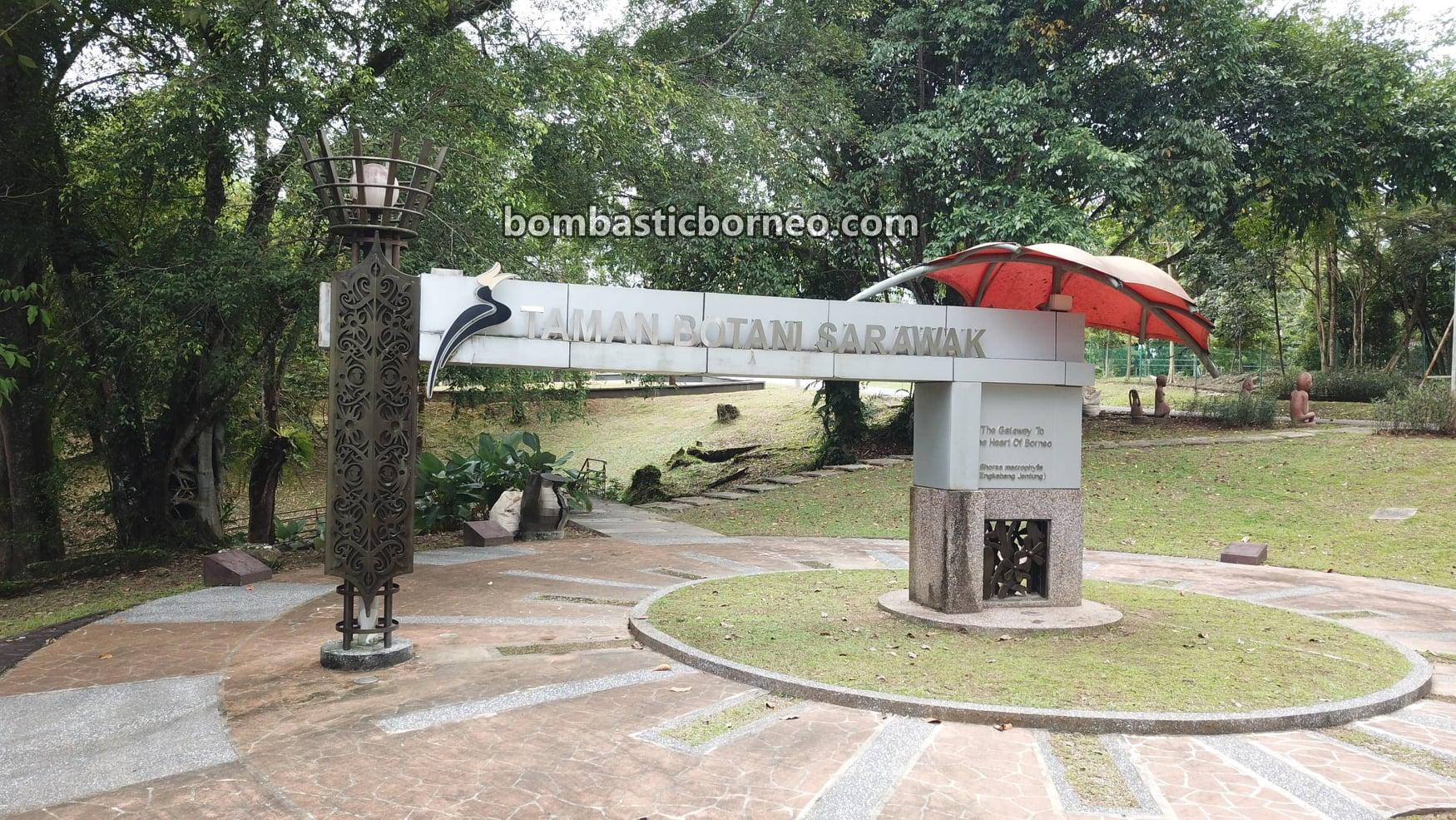 Taman Botani Sarawak, Sarawak Botanical Garden, recreational park, tempat senaman, outdoor, exercise, jogging, cycling, nature, destination, Kuching, Malaysia, Tourism, tourist attraction, travel guide,