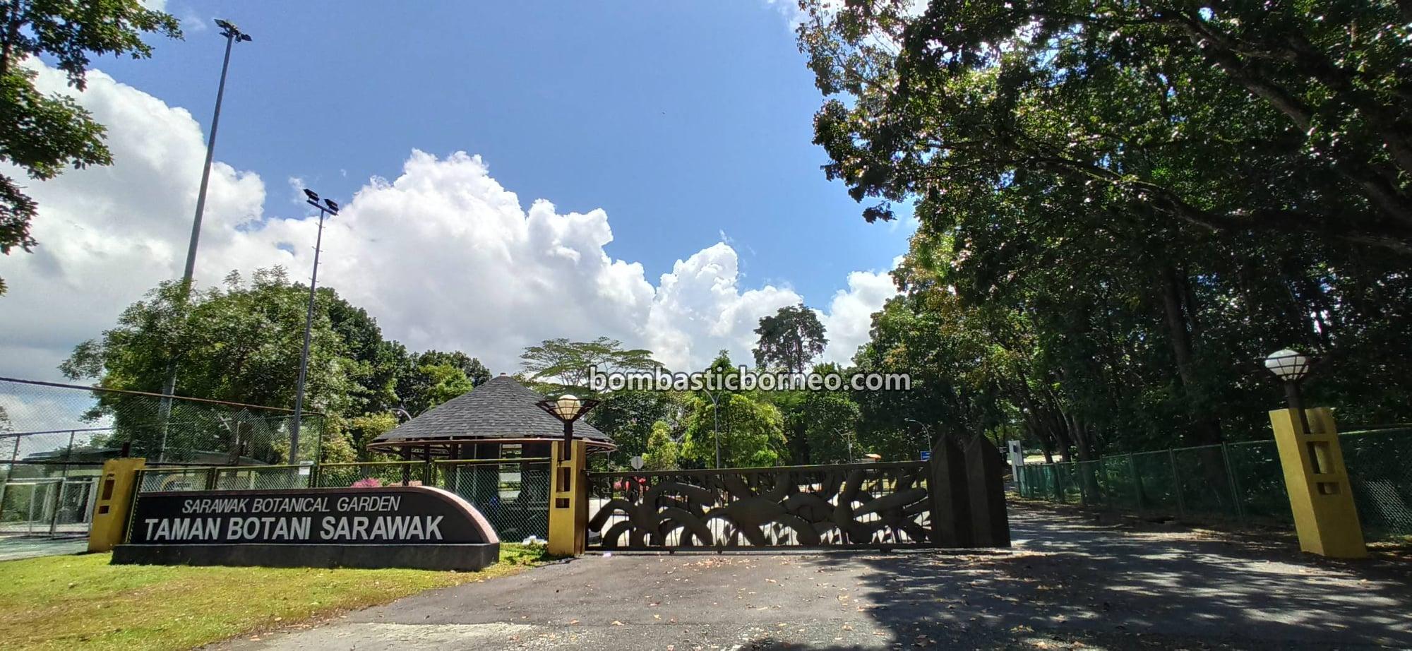 Taman Botani Sarawak, recreational park, tempat senaman, outdoor, exercise, jogging, cycling, destination, exploration, Borneo, Tourism, travel locally, 婆罗洲游踪, 马来西亚砂拉越, 古晋植物园景点