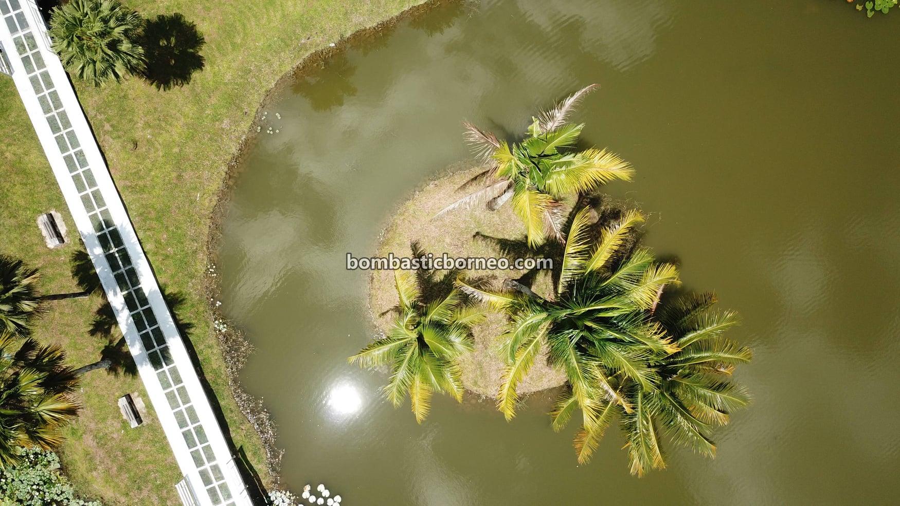 Sarawak Botanical Garden, recreational park, tempat senaman, outdoor, exercise, destination, Malaysia, Borneo, cycling, manmade lake, objek wisata, Tourism, travel guide, 马来西亚砂拉越, 古晋植物园景点