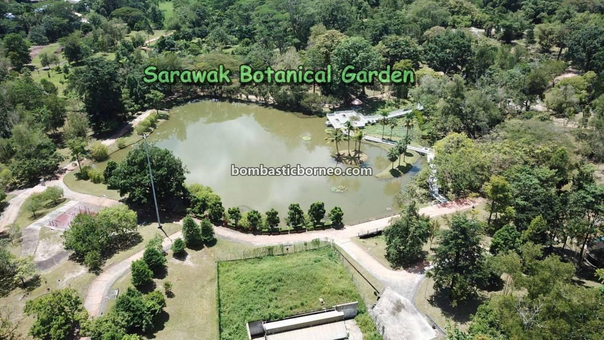 Sarawak Botanical Garden, tempat senaman, outdoor, sports, jogging, nature, destination, exploration, Malaysia, Tourism, tourist attraction, travel local, 婆罗洲游踪, 古晋植物园, 砂拉越运动地方