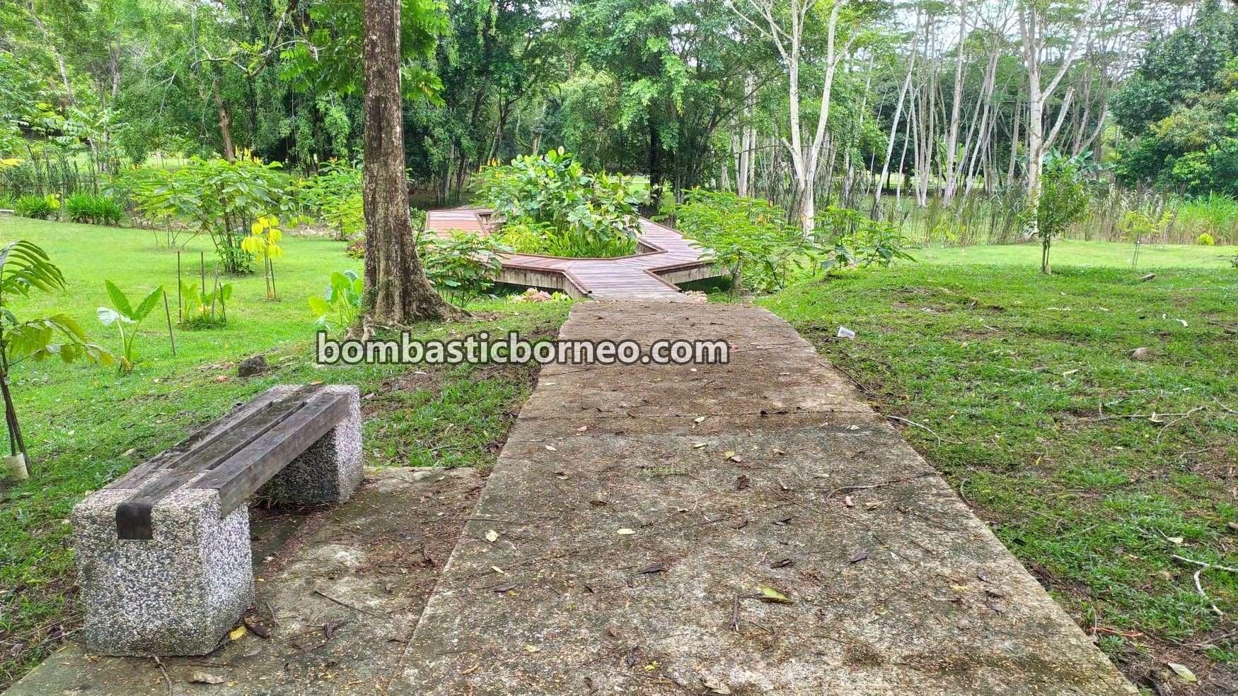 Sarawak Botanical Garden, recreational park, outdoor, exercise, healthy, jogging, walking, nature, Malaysia, Borneo, objek wisata, travel locally, 马来西亚砂拉越, 古晋植物园, 散步运动景点