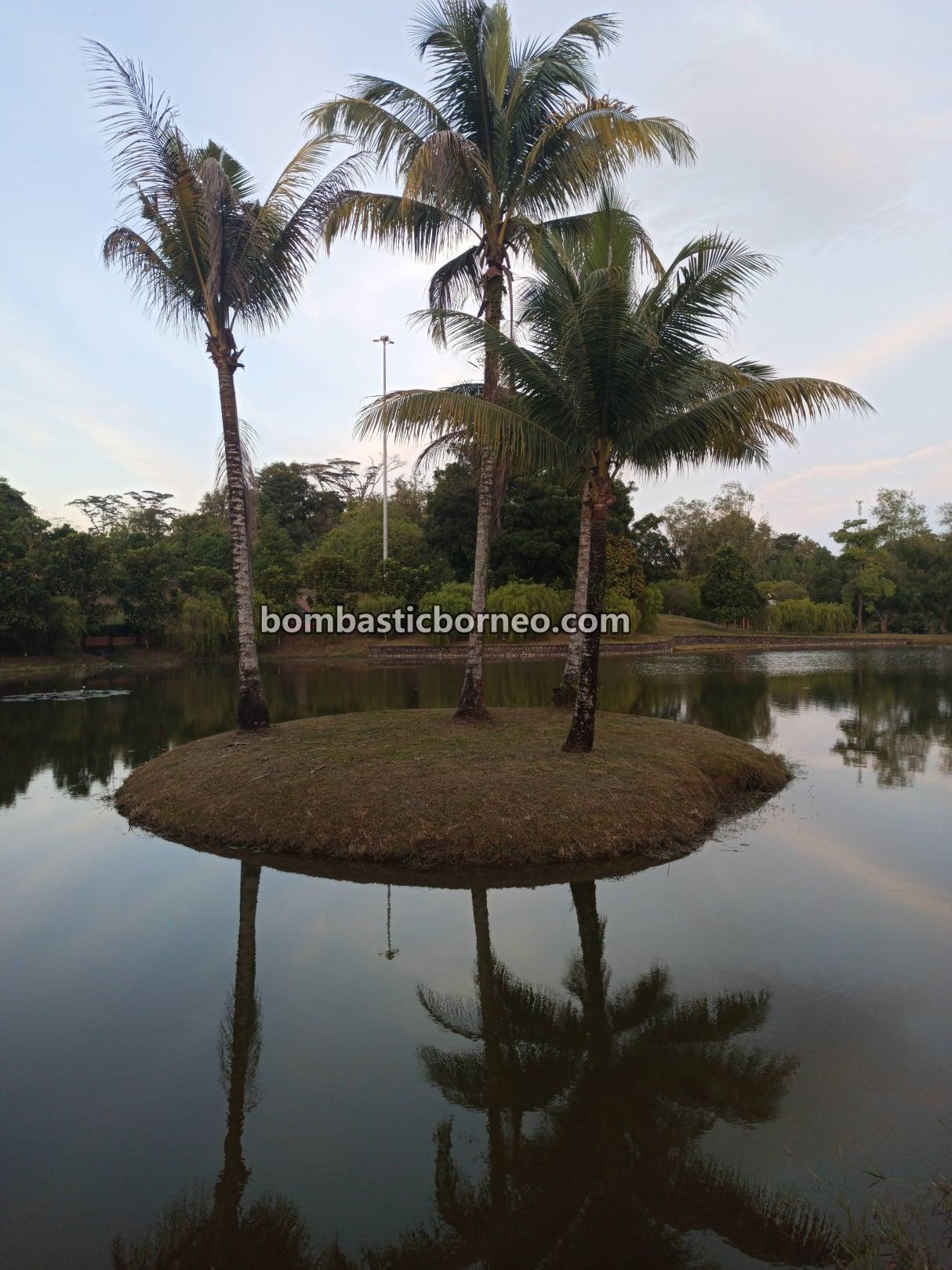 Sarawak Botanical Garden, recreational park, tempat senaman, outdoor, exercise, healthy, jogging, destination, exploration, Malaysia, manmade lake, Tourism, tourist attraction, 马来西亚砂拉越, 古晋旅游景点
